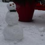 neigeP1260368.JPG