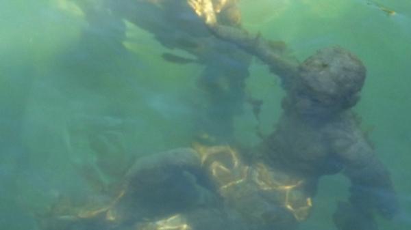 sous l'eau P1430772