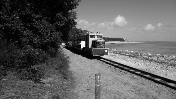 trainP1110088