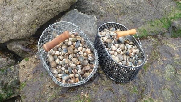 pêche P1490619.JPG