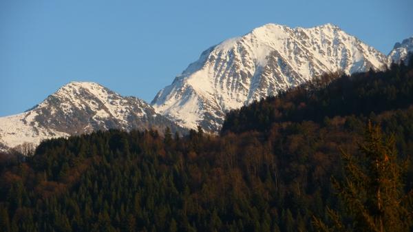 alpes P1540842.jpg