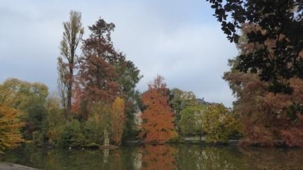 automne-P1230218.jpg