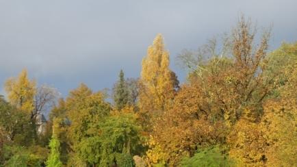 automne-P1230220.jpg