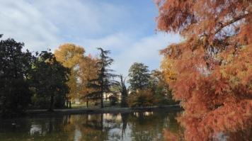automne-P1230227.jpg