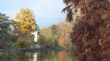 automne-P1230229.jpg